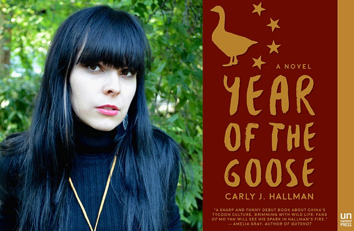 Book Review: Year of the Goose