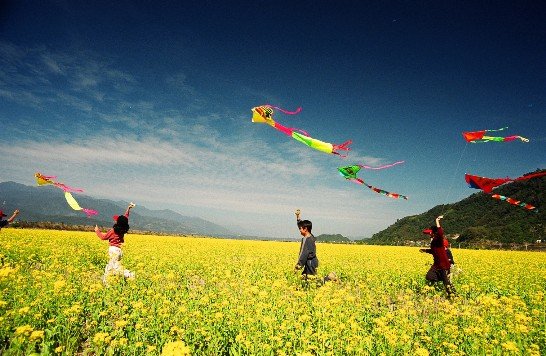 explainer-qingming-kite-flying.jpg