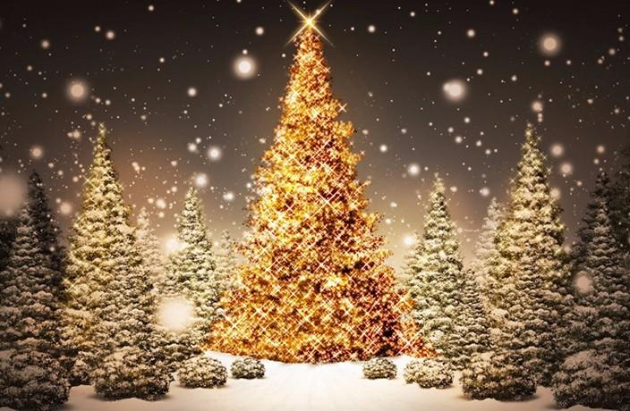 fantastic-beautiful-christmas-tree.jpg