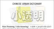 Chinese Urban Dictionary: Xiao Touming