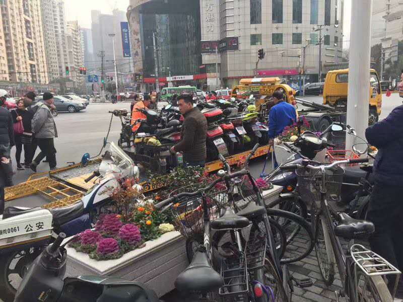 Shanghai Scooter Crackdown