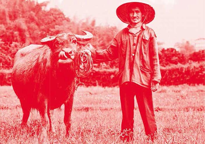 China domestic beef industry — That's Shanghai, Beijing, Guangzhou, Shenzhen — thatsmags.com