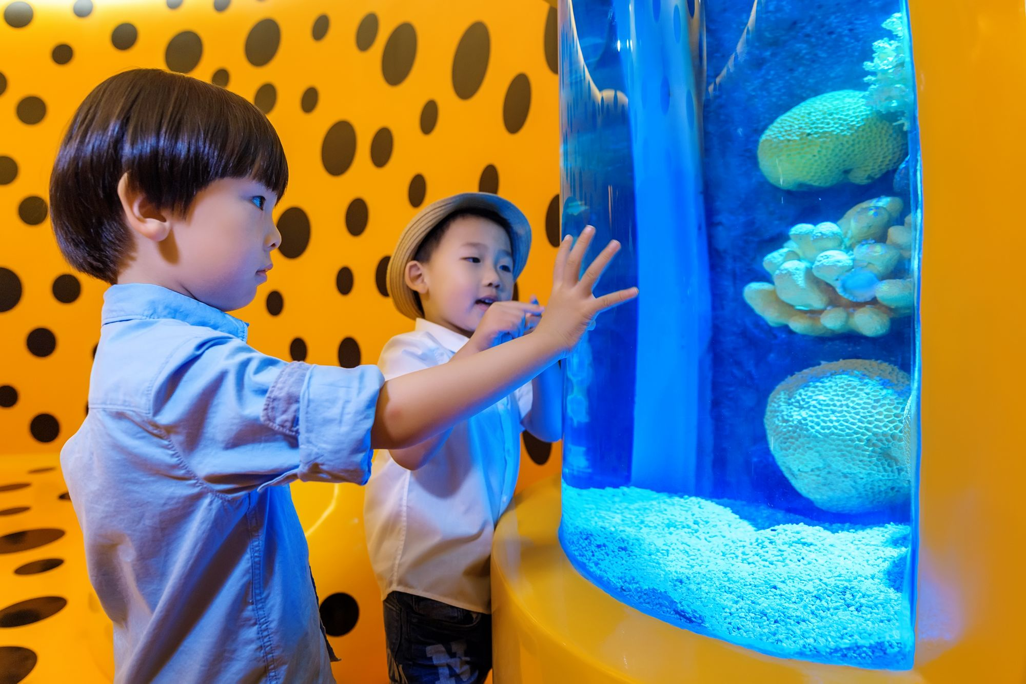 ... Of Living Art Aquarium Is Inspired From Influential Japanese Artist  Yayoi Kusama, The Aquarium Sees Her Ironic Polka Dots Painted From Ceiling  To Floor, ...