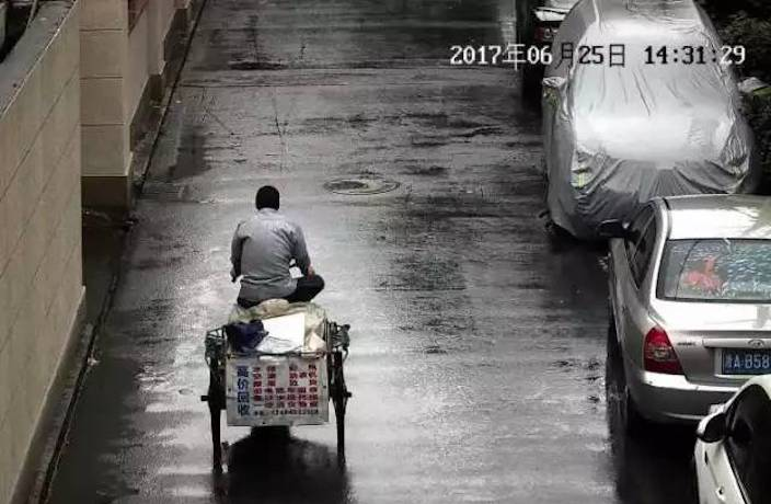 Drunk Man Steals ¥20,000 Worth of Racing Pigeons, Eats Most of Them