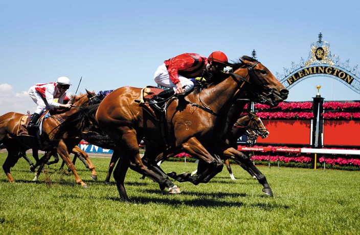 Last Chance to Buy AustCham Shanghai 2017 Melbourne Cup Tickets