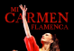 Mi Carmen Flamenca at Shenzhen Children's Palace