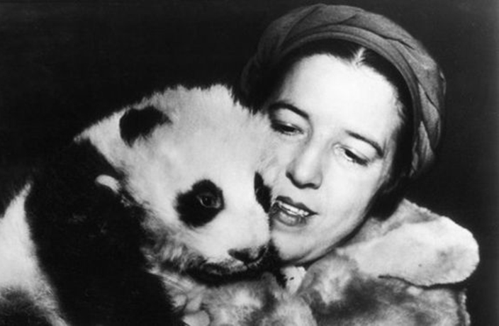 This Week in History: First Panda to Leave China Discovered