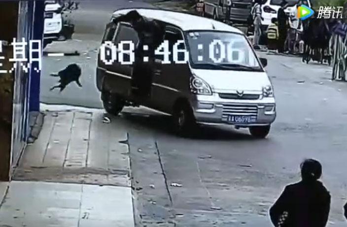 WATCH: Pet Dog Lassoed into Van in Sickening Guangzhou Dog