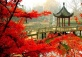 Nanjing Best Hot Springs and Maple Trees!