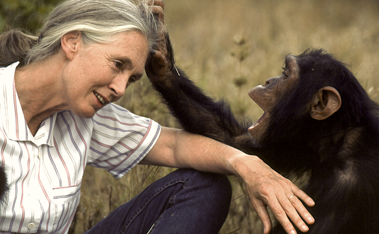 Famous People Born in the Year of the Dog Jane Goodall