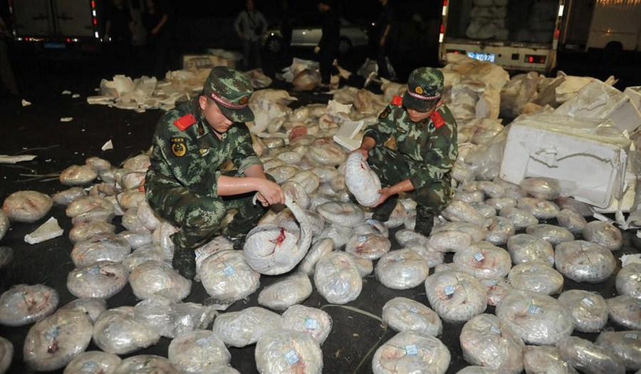 A recent bust last month in Guangdong uncovered more than 1,000 frozen pangolins en route to dinner tables.