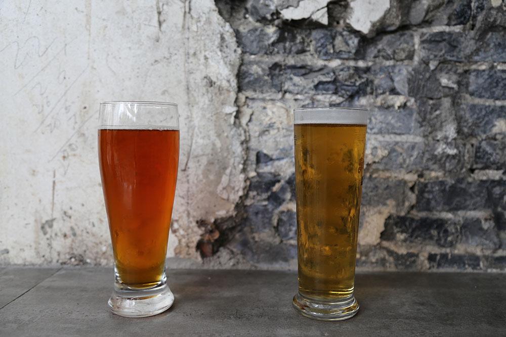 Ales vs. Lagers: Beer 101