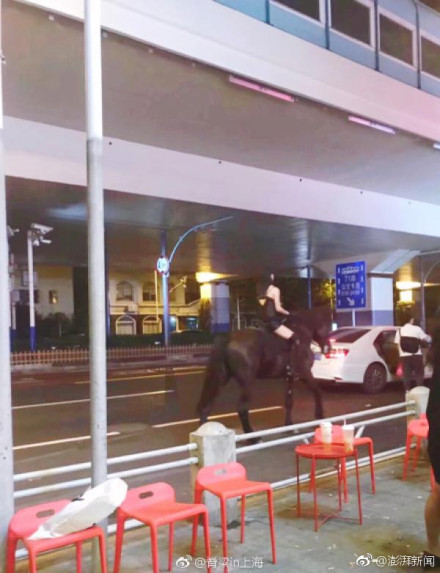 WATCH: Woman Rides Horse on the Streets of Shanghai