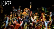 Get Your Tickets to See Cats the Musical in Shanghai