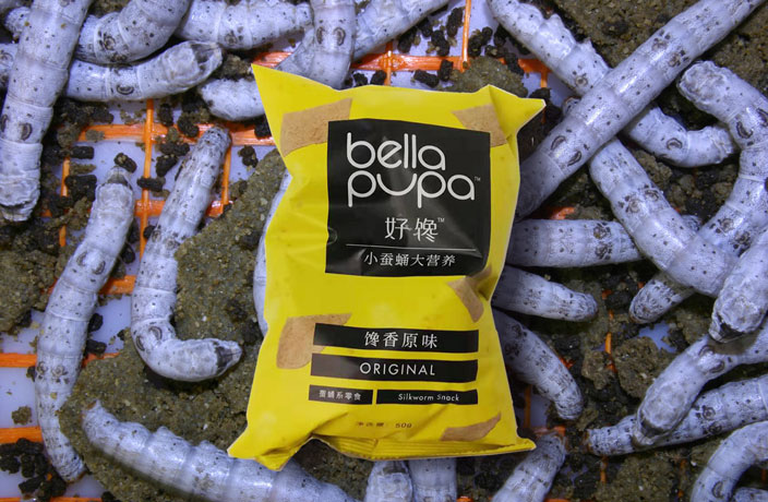 bella-pupa-bug-chips1.jpg
