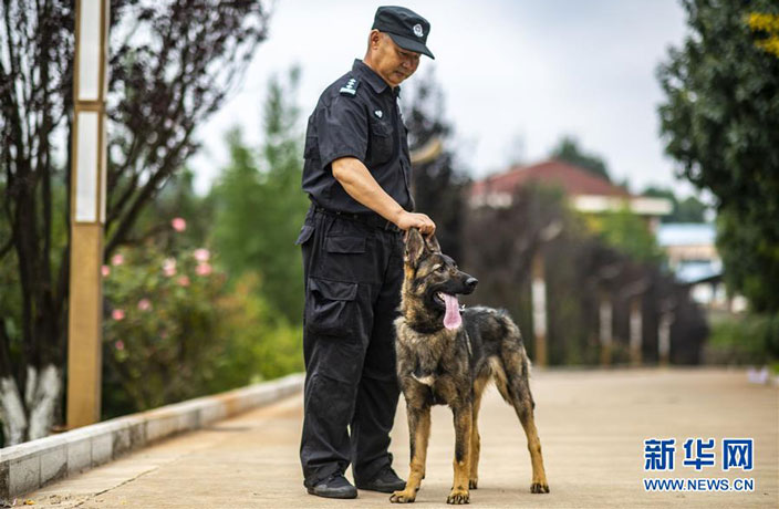 China's First Cloned Police Dog Ready for Duty