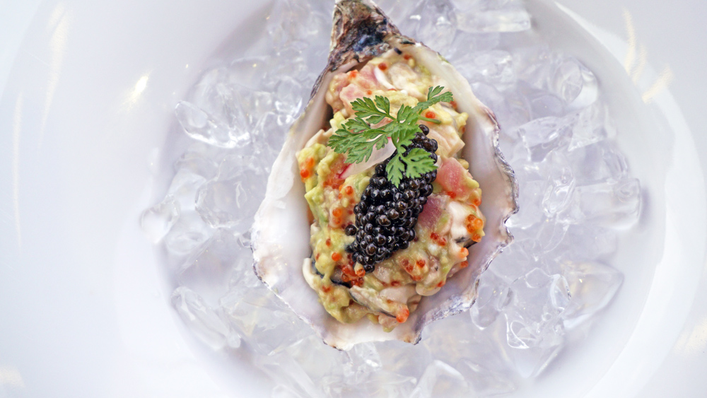 wann-lounge-diced-oyster2.jpg