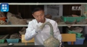 2,000-Year-Old Pot of Unidentified Liquid Unearthed in China