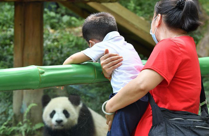 Guangzhou's Chimelong Safari Park Reopens