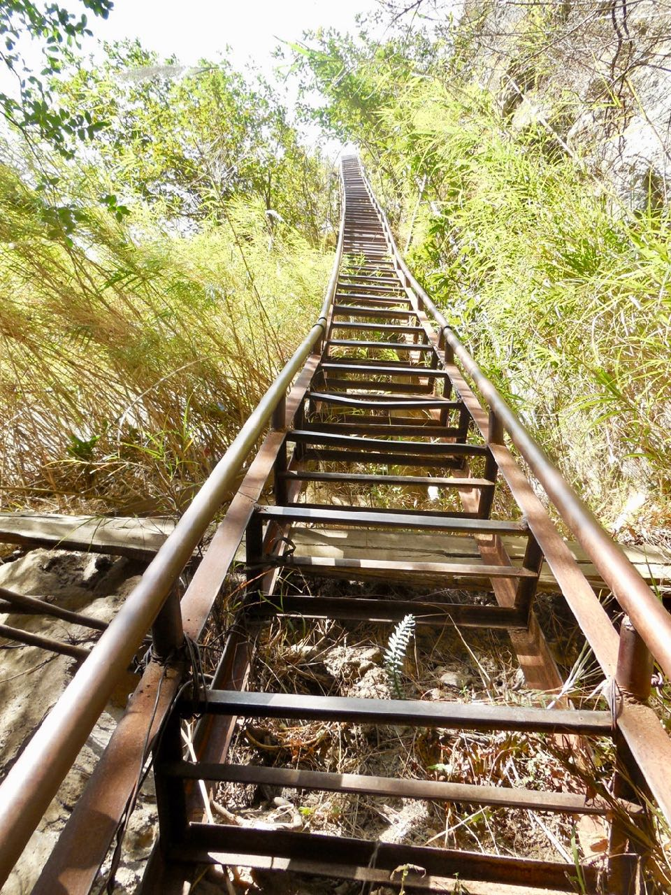 tiger-leaping-gorge-ladder