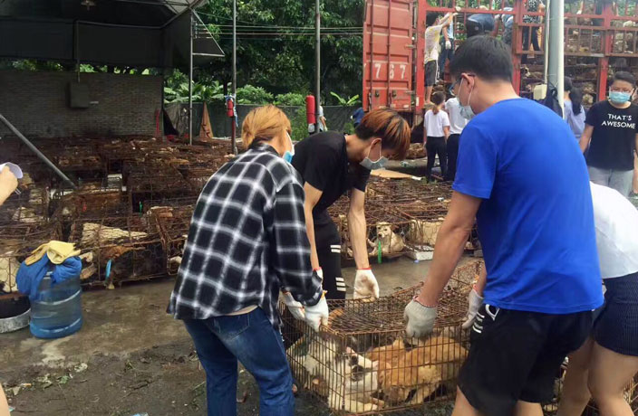 Dog-Meat-Still-on-the-Menu-at-Tomorrow-s-Controversial-Yulin-Festival-6.jpg