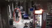 Man Carries Wife's Severed Head Down Guangzhou Street