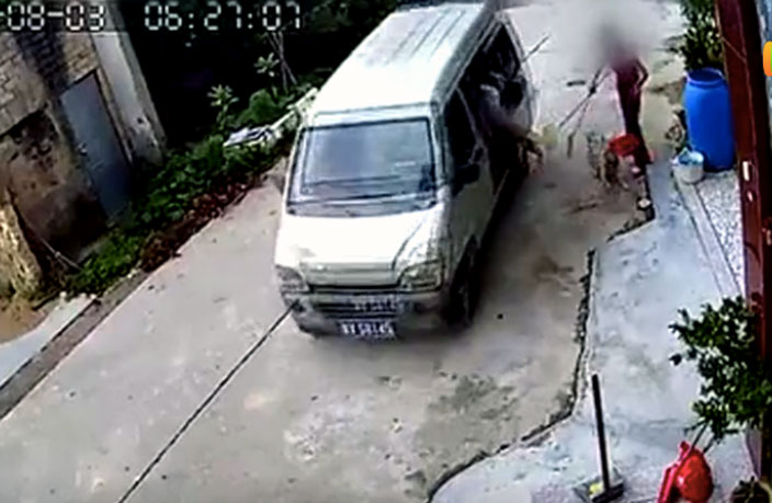 WATCH: Woman Thwarts Dog Snatcher with Broom in South China