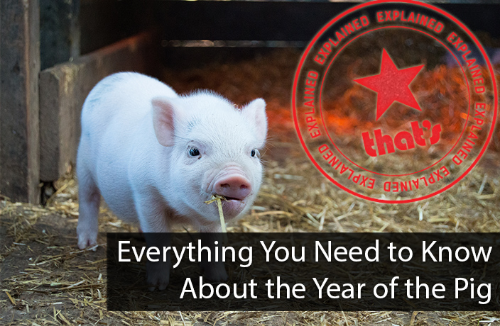 Explainer: Everything You Need to Know About the Year of the Pig