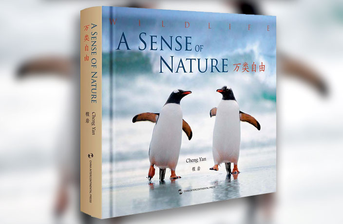 A Sense of Nature
