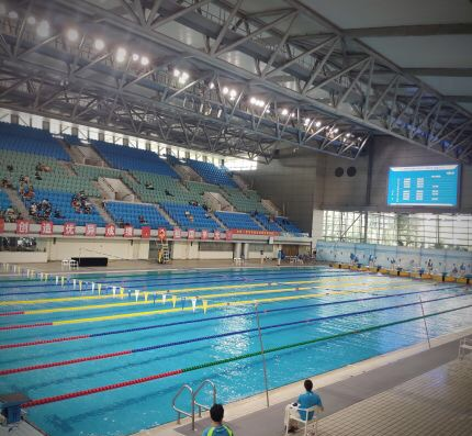 shenzhenswimmingdiving.jpg