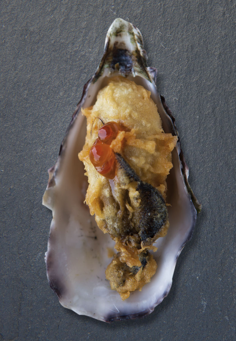 oyster-t-1.jpg
