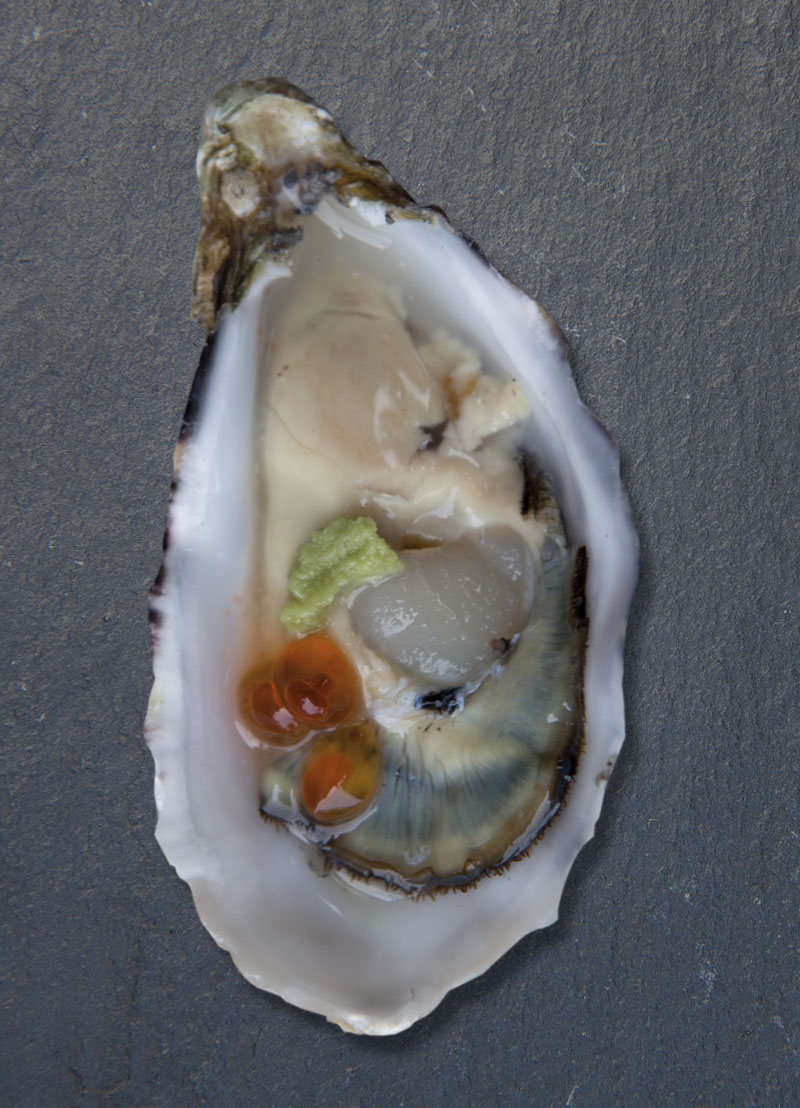 oyster-t-2.jpg