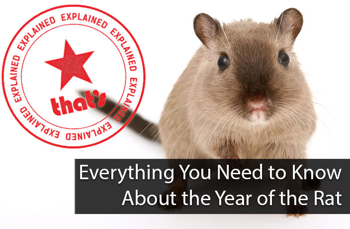 Explainer: Everything You Need to Know About the Year of the Rat