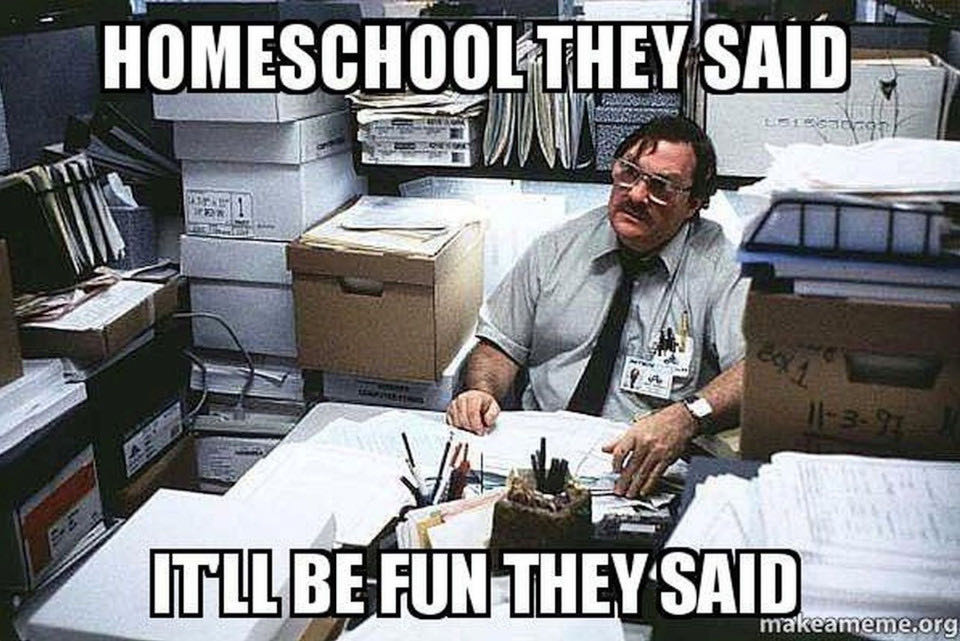 15 Home Schooling Memes So You Can Crack Up as You Break Down