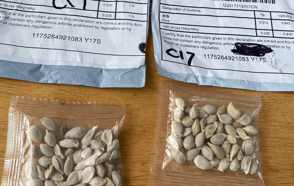Chinese Online Scam Leaves Seed Packages All over the US