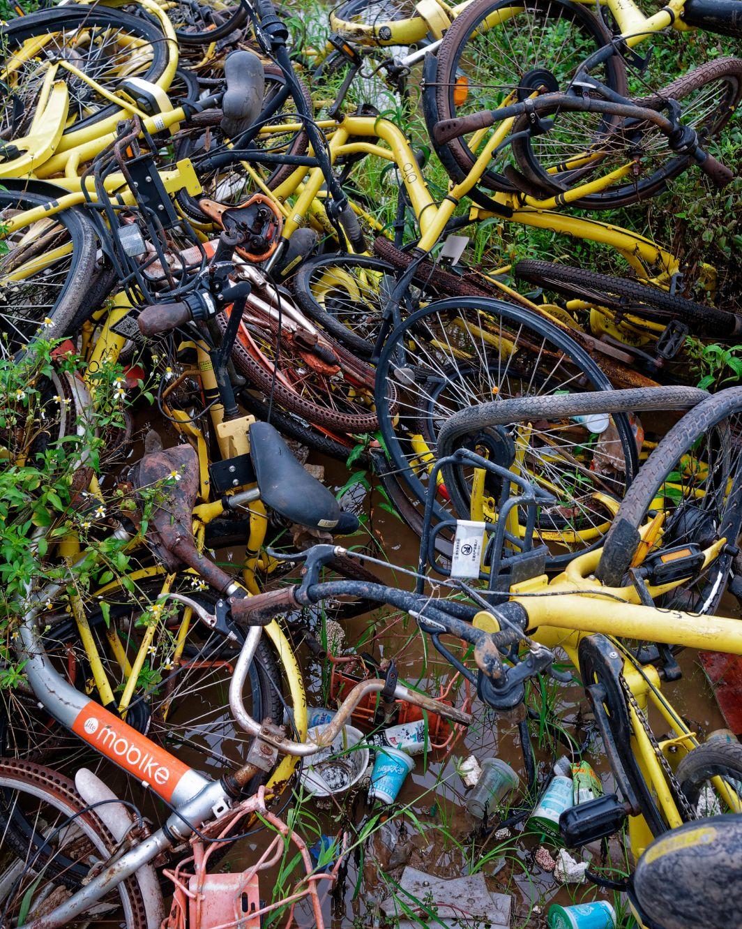 Rotting-Bikes-51---Frantabina-1-.jpg