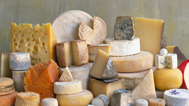 Over 100 Types of Cheese for the Life You Deserve!