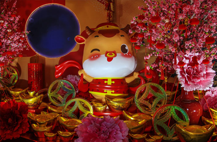 Useful Mandarin Phrases for Spring Festival and the Year of the Ox