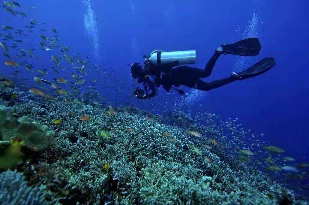 scuba-diving-water-activity-sanya-hainan.jpeg